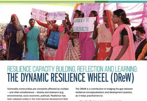 Resilience Capacity Building, Reflection and Learning: The Dynamic Resilience Wheel (DReW)