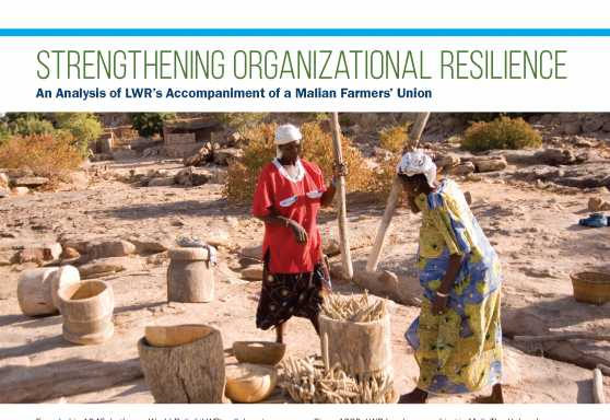 Strengthening Organizational Resilience: An Analysis of LWR's Accompaniment of a Malian Farmers' Union